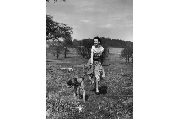 Unpublished photograph of Audrey Hepburn in Richmond Park by Bert Hardy, 30 April 1950 © Getty Images