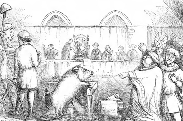 Top 10 animals on trial © Wikimedia Commons