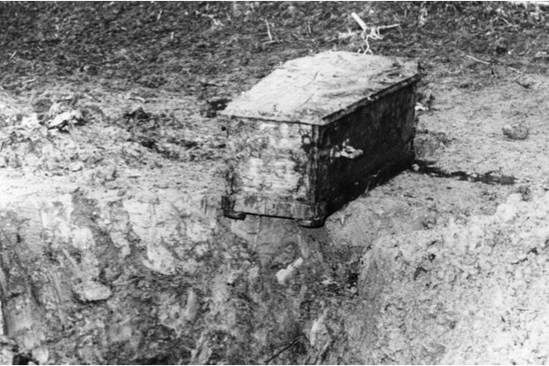 Charlie's coffin was found buried in a cornfield close to the Chaplin home, 22 May 1978 © Getty Images