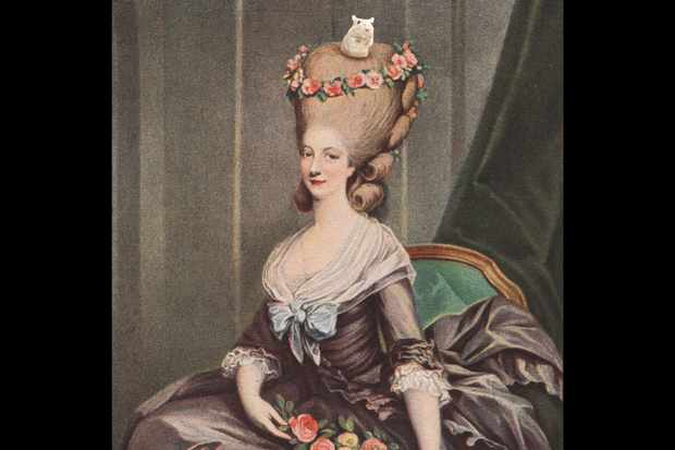 Did rococo wigs really have mice  - historyrevealed.com 0e6258a99
