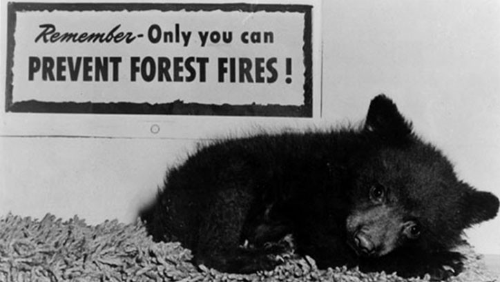 Smokey The Bear © US Department of Forestry