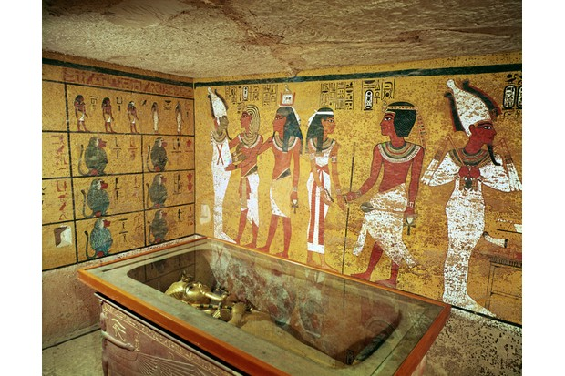 The Curse Of King Tuts Tomb Torrent: Where Is Nefertiti's Mummy?