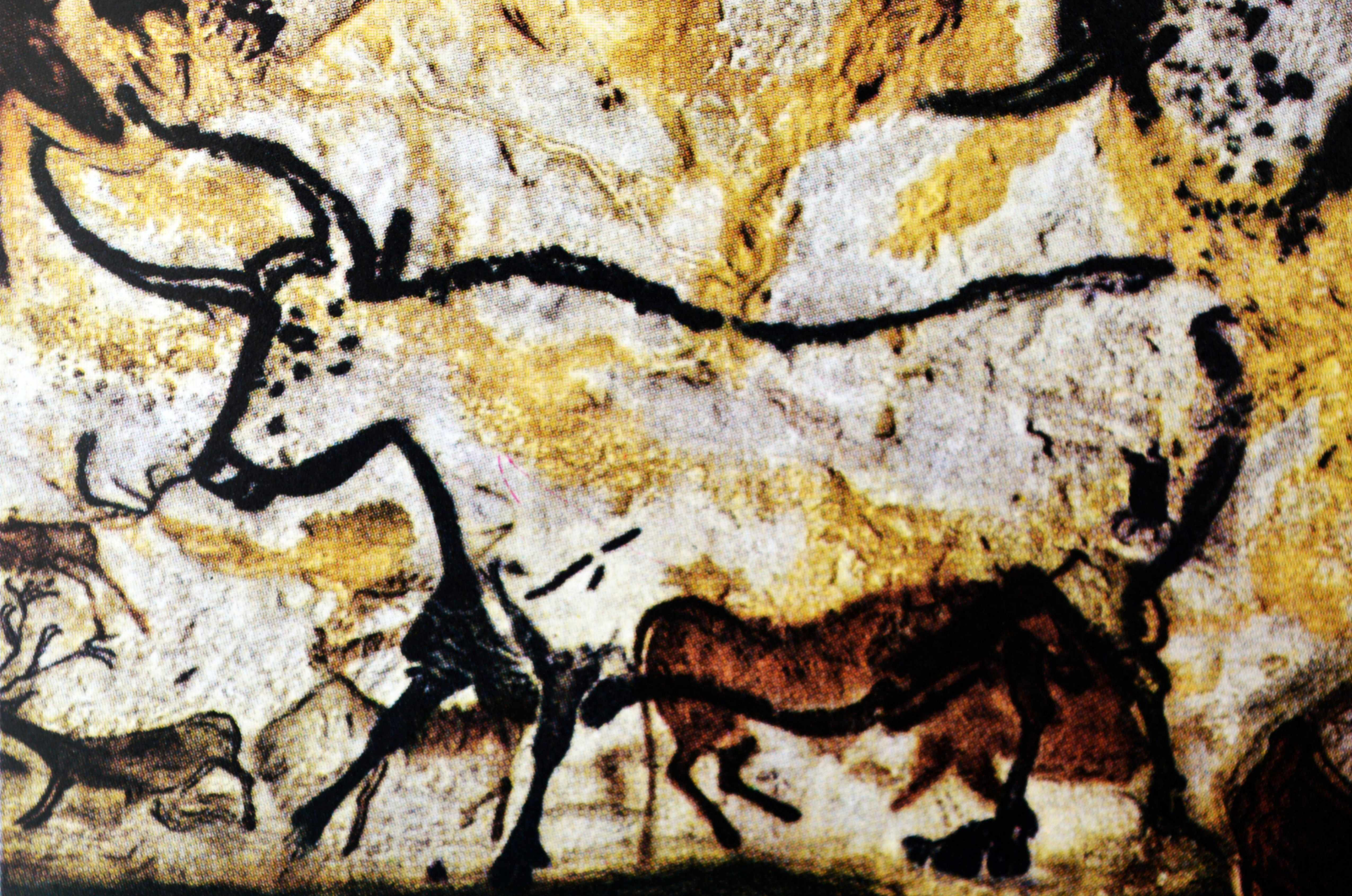 Detail of a cave painting at Lascaux, France. © Getty