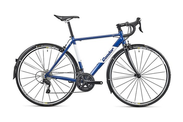 Winter road bike with mudguards