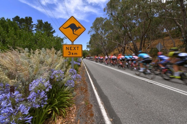 How to watch the Tour Down Under 2020 TV coverage | Full schedule for live TV, streaming and highlights
