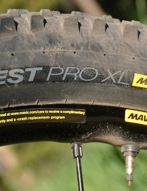 Mavic Deemax Pro wheels are shod with Mavic Claw Pro XL and Quest Pro XL tires