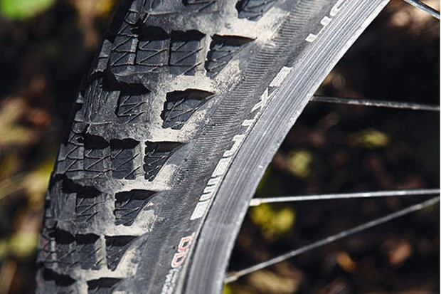 Schwalbe Marathon Extreme tyres
