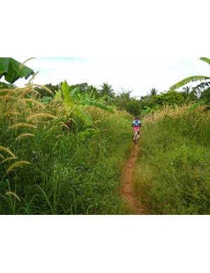 The tours run through seldom-seen parts of Cambodia.