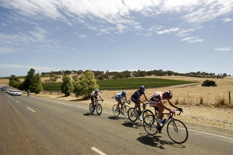 The peloton at the 2007 Tour Down Under.