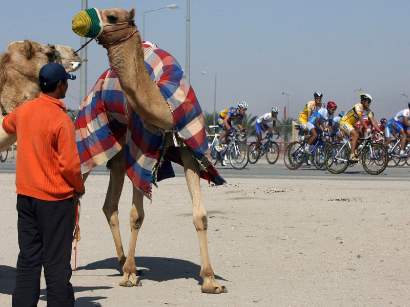 Cyclists compete during the third stage of the Tour of Qatar cycling race in Doha, 29 January 2008
