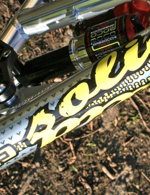 Neat downtube detailing decals