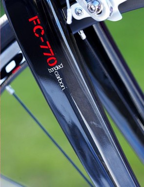 The Fuji's carbon fork is a real treat to the eye.