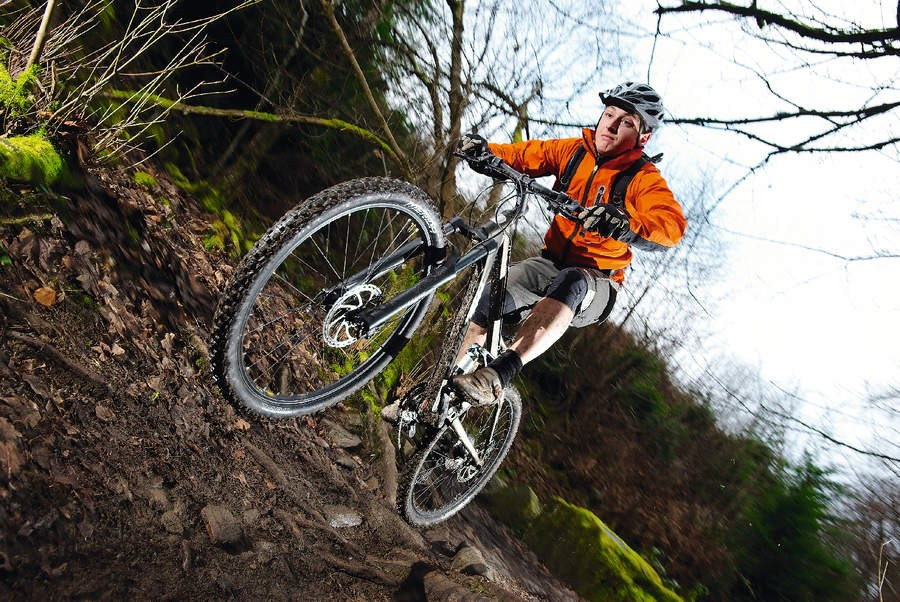 The 500-D is a fully active, do anything ride with good trail handling manners