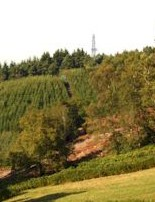 Europa's artist's impression of the proposed drillsite for Leith Hill in Surrey shows it as a speck on the horizon
