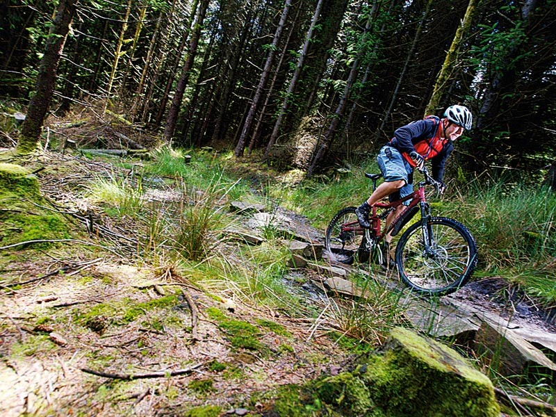 There's amazing riding to be had at Afan Forest