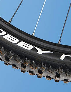Schwalbe's fat Nobby Nick and Racing Ralph tyres are excellent