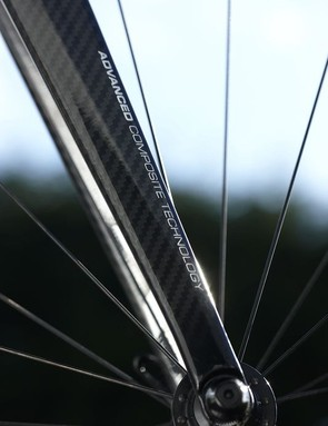 Giant provides its own Advanced-Grade Composite fork