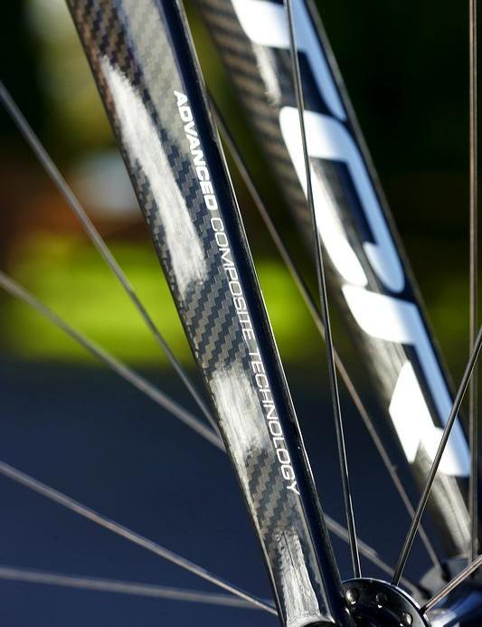 Elegant carbon fork