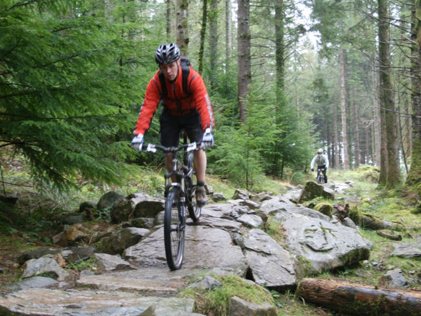 Riding the fantastic trails at Coed-y-Brenin