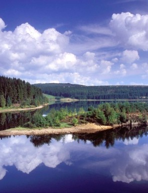 Lewiburn Bay provides a stunning backdrop to Kielder Forest