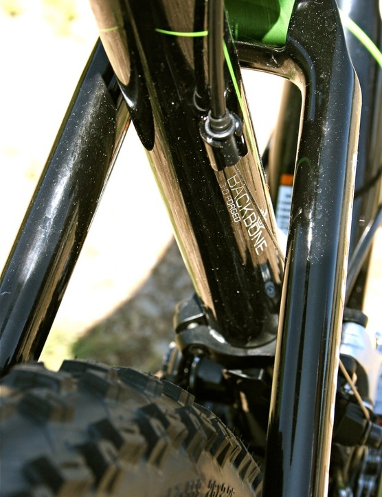 Cannondale's Backbone 3-D forged seat tube.
