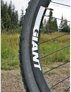 This mid-depth 29in rim design uses shorter spokes to yield a stiffer wheel