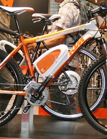 E race electric mountain bike