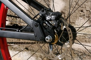 The non drive-side dropout and rear disc brake mount.