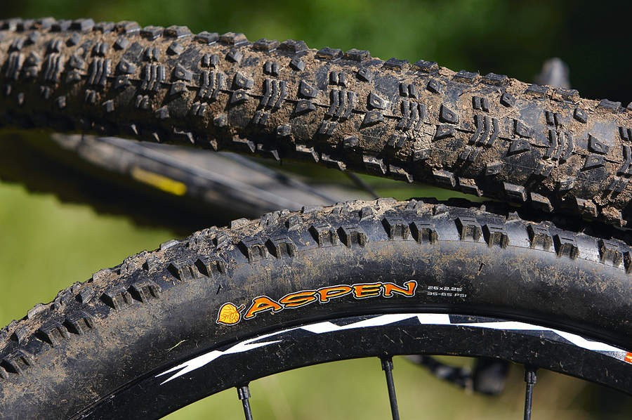 Maxxis Aspen Exception Series 2.25in Tyre