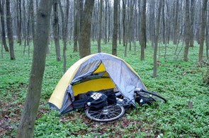 Camping in a patch of roadside woodland in Poland