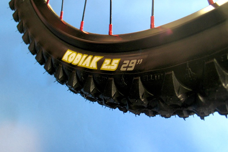 The Niner-exclusive WTB Kodiak 29 x 2.5-inch DH tyre.