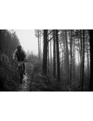 Rider in the woods