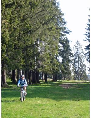 On the Jura Bike mountain bike route