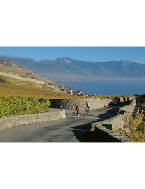 Cycling through the UNESCO World Heritage wine growing region of Lavaux, alongside Lake Geneva