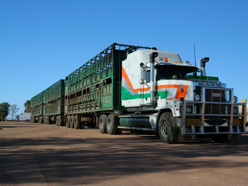Truck drivers have been asked to come forward with information about a crash on the Dukes Highway near Adelaide, Australia