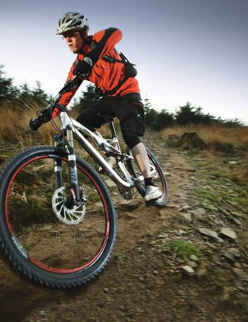 The Stumpy may not take the 'king of the trail bikes' crown, but it is a prince regent