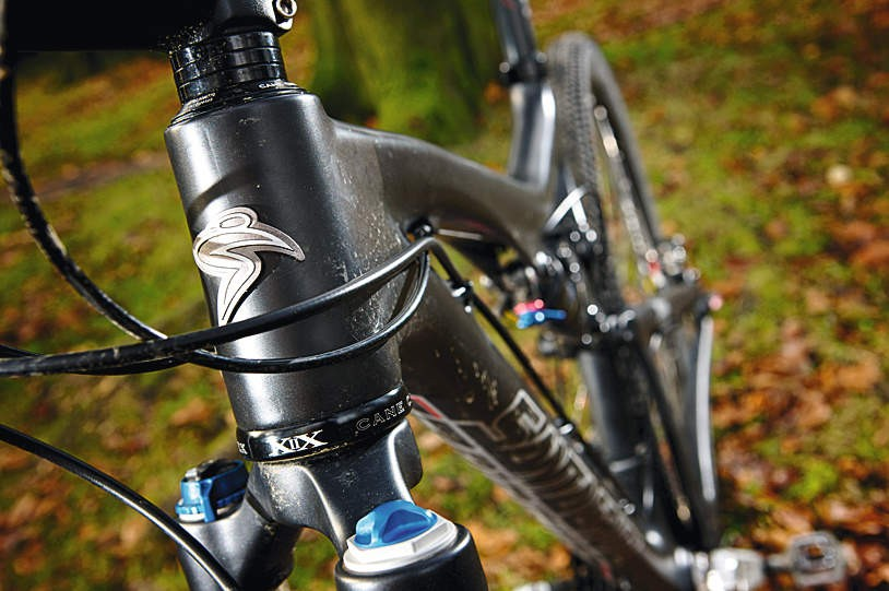 The Tallboy's head tube is  compatible with tapered steerer tubes
