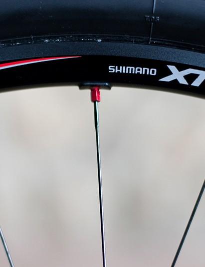 Shimano XTR wheels roll Craig along