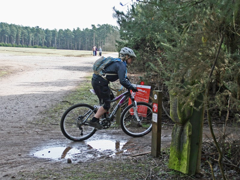 This rider's about to put a Norco to the test on the twists and turns of Follow The Dog
