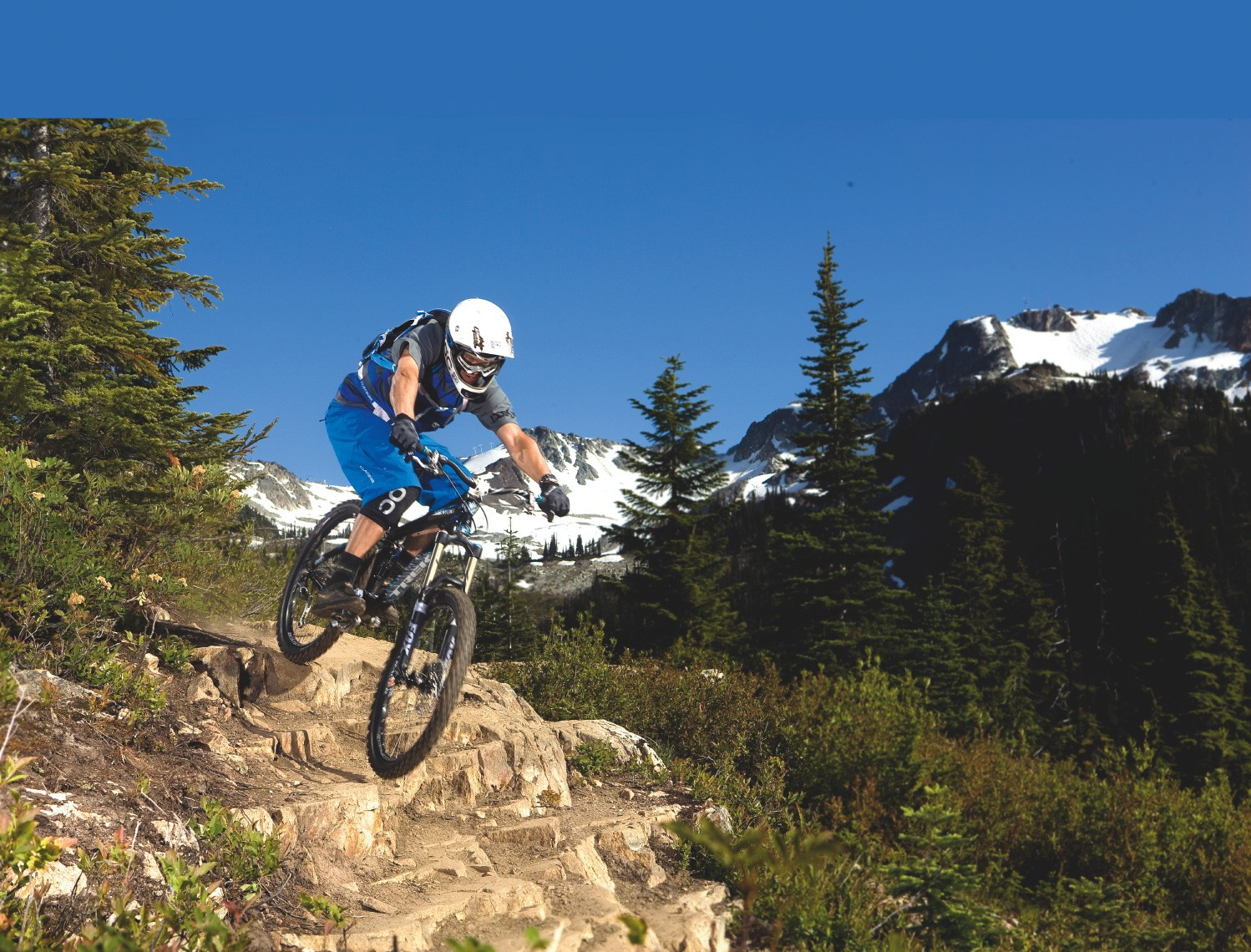 Whistler - you could be here soon!