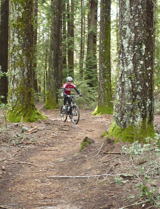 Sue George riding the Santa Cruz Nickel in the forests around Santa Cruz, California