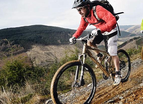BMC Trail Fox 2
