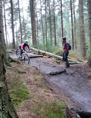 Log drop-off 3