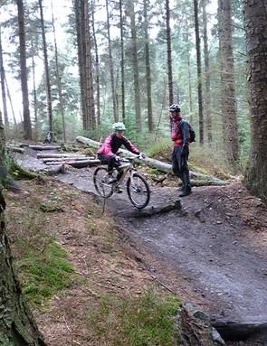 Log drop-off 7