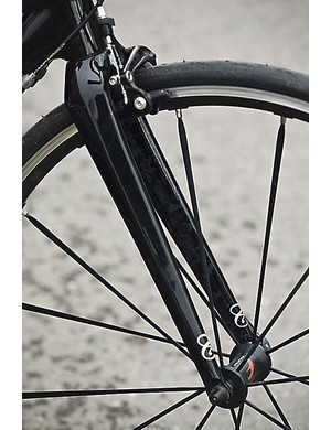 Straight-bladed all-carbon fork