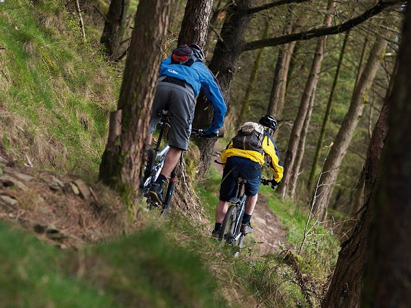 Afan Forest's mountain bike trails at risk - inlcuding the Wall