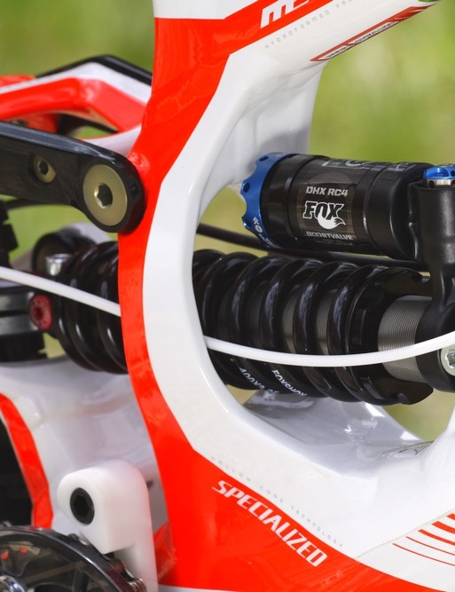 Specialized Demo detail