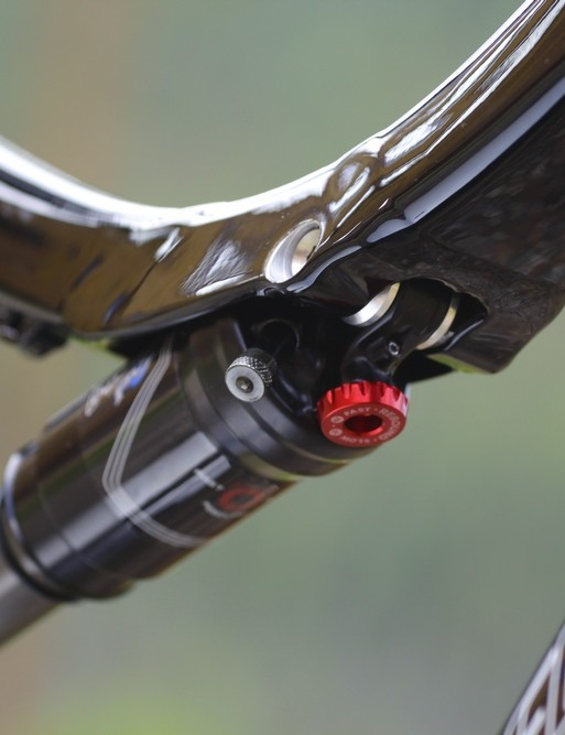 Specialized Safire detail