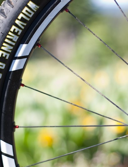 WTB's reinforced Wolverine 2.2 TCS tyre is specifically designed for Downieville; it rolls fast with plenty of puncture protection