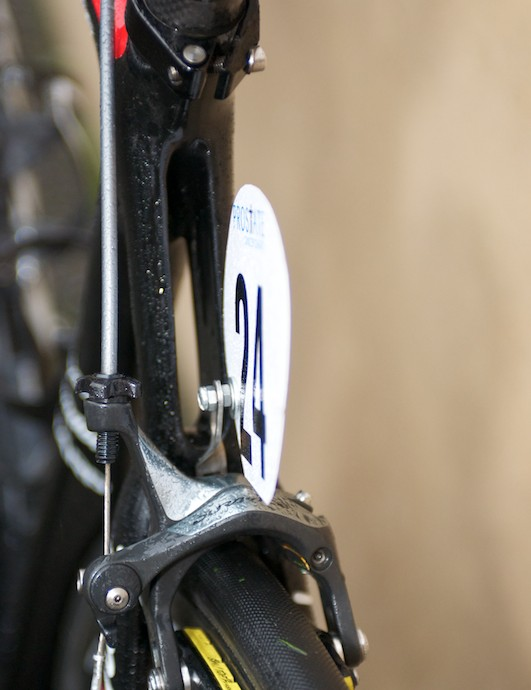 More a split wishbone seatstay than individual stays